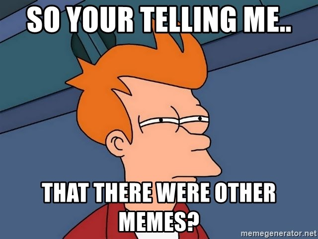 Futurama Fry - So your telling me.. That there were other memes?