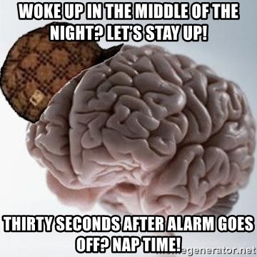 Scumbag Brain - Woke up in the middle of the night? Let's stay up! Thirty seconds after alarm goes off? Nap time!