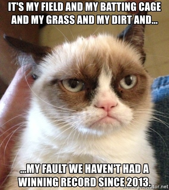 Grumpy Cat 2 - it's my field and my batting cage and my grass and my dirt and... ...my fault we haven't had a winning record since 2013.