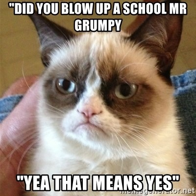 "Grumpy Cat  - ""did you blow up a school mr grumpy ""yea that means yes"""