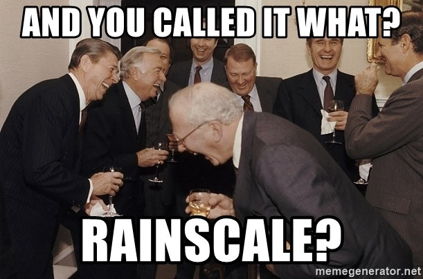 So Then I Said... - And you called it what? RAINSCALE?