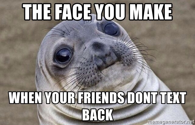 Awkward Seal - the face you make when your friends dont text back