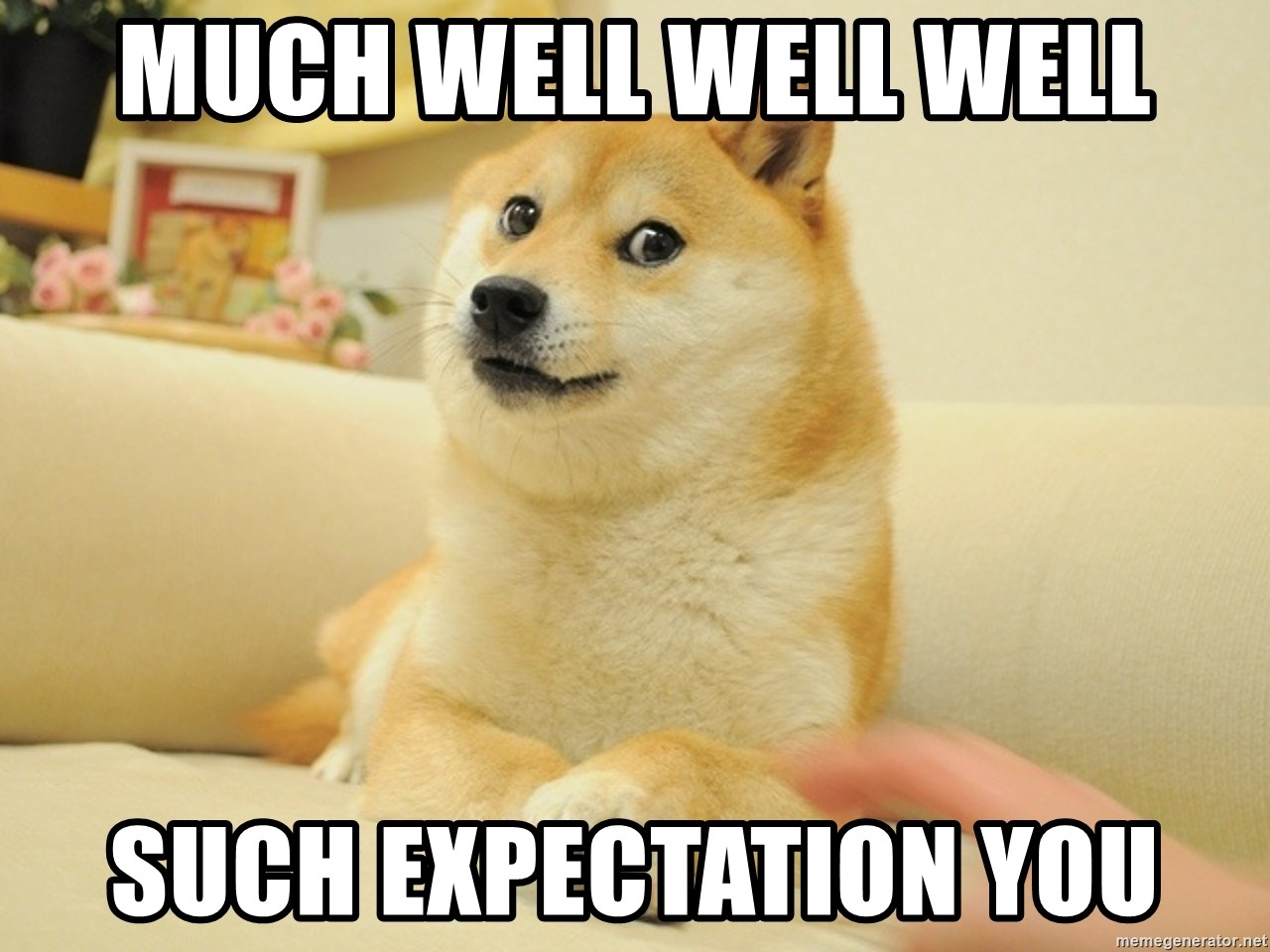 so doge - MUCH WELL WELL WELL SUCH EXPECTATION YOU
