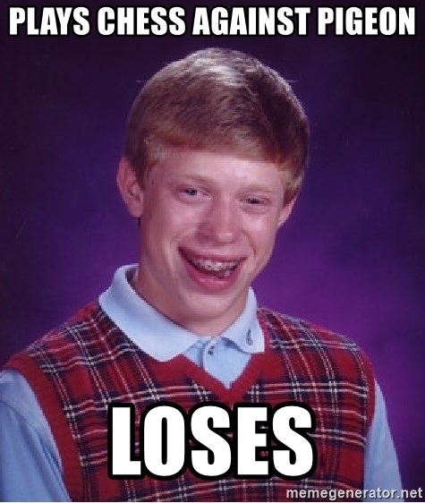 Bad Luck Brian - Plays chess against pigeon Loses