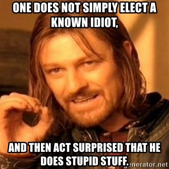 One Does Not Simply - One does not simply elect a known idiot, and then act surprised that he does stupid stuff.