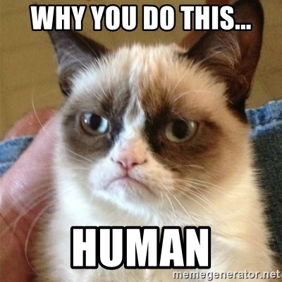 Grumpy Cat  - why you do this... human