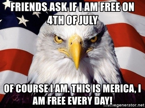 American Pride Eagle - Friends ask if i am free on 4th of july of course i am. This is Merica, I am free every day!