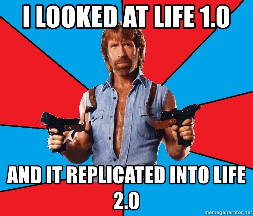 Chuck Norris  - I looked at LIFE 1.0 And it replicated into LIFE 2.0