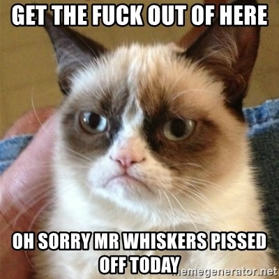 Grumpy Cat  - GET THE FUCK OUT OF HERE Oh sorry mr whiskers pissed off today