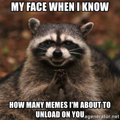 evil raccoon - my face when i know how many memes I'm about to unload on you