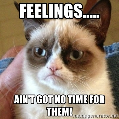 Grumpy Cat  - Feelings..... Ain't got no time for them!