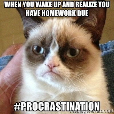 Grumpy Cat  - When you wake up and realize you have homework due #procrastination