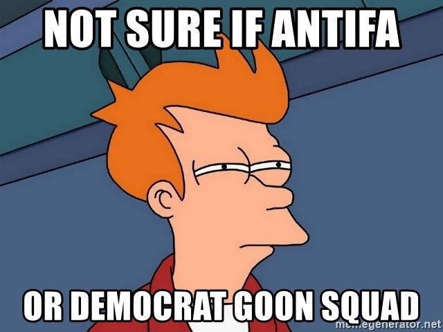 Futurama Fry - Not sure if Antifa  or Democrat Goon Squad