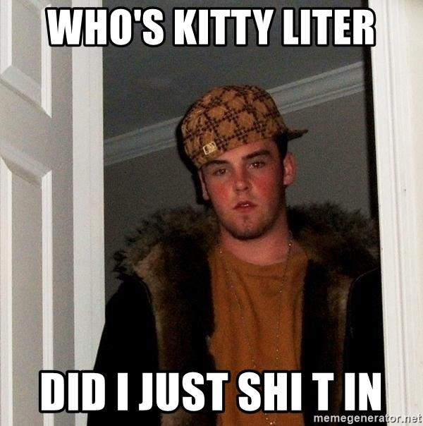 Scumbag Steve - Who's kitty liter Did I just shi t in