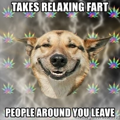 Stoner Dog - takes relaxing fart people around you leave