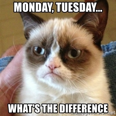 Grumpy Cat  - Monday, Tuesday... What's the difference