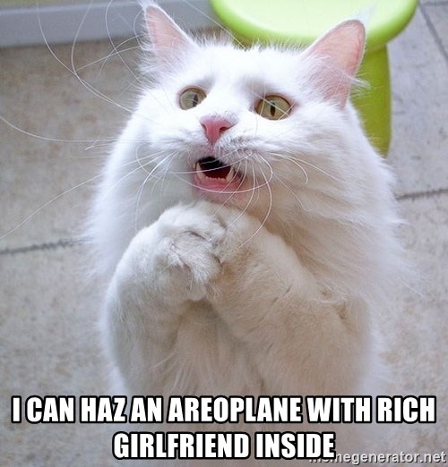 i can haz cat - I can haz an areoplane with rich girlfriend inside