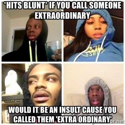 Hits Blunts - *HITS BLUNT* IF YOU CALL SOMEONE EXTRAORDINARY  WOULD IT BE AN INSULT CAUSE YOU CALLED THEM 'EXTRA ORDINARY'