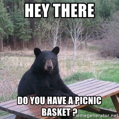 Patient Bear - hey there do you have a picnic basket ?