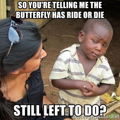 Skeptical 3rd World Kid - So you're telling me the butterfly has ride or die Still left to do?