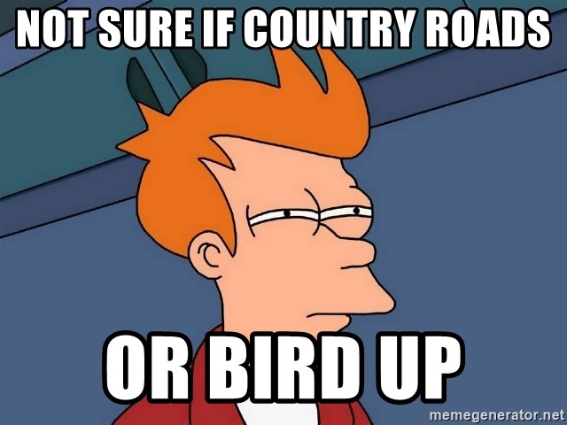 Futurama Fry - not sure if country roads or bird up