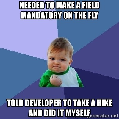 Success Kid - needed to make a field mandatory on the fly told developer to take a hike and did it myself