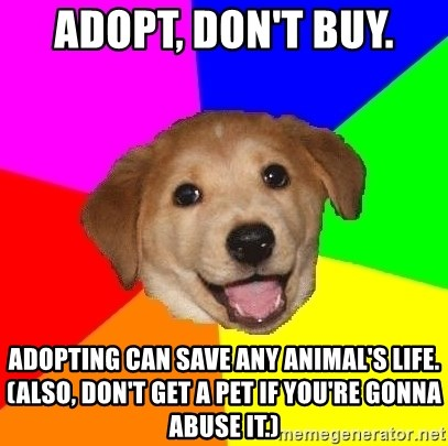 Advice Dog - ADOPT, DON'T BUY. ADOPTING CAN SAVE ANY ANIMAL'S LIFE. (Also, don't get a pet if you're gonna abuse it.)