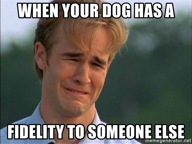 Crying Man - When your dog has a fidelity to someone else