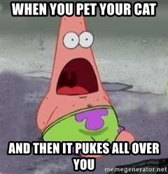 D Face Patrick - When you pet your cat  And then it pukes all over you