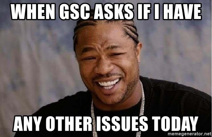 Yo Dawg - When GSC asks if I have any other issues today