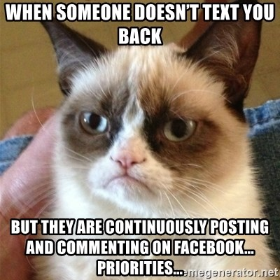 Grumpy Cat  - when someone doesn't text you back but they are continuously posting and commenting on facebook... priorities...