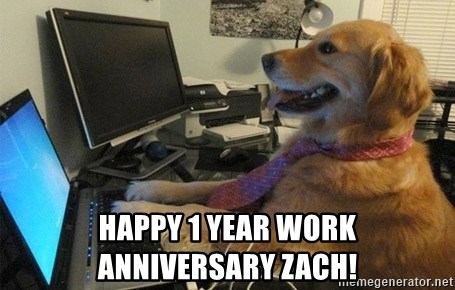 I have no idea what I'm doing - Dog with Tie - HAPPY 1 YEAR WORK  anniversary zACH!