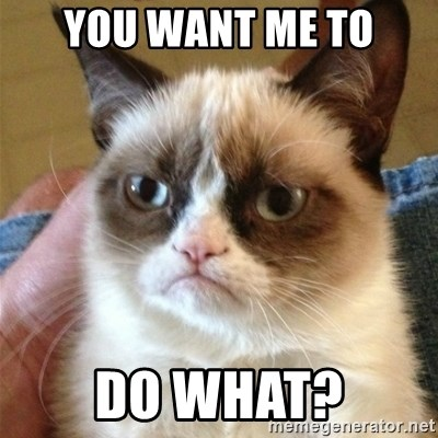 Grumpy Cat  - You want me to do what?