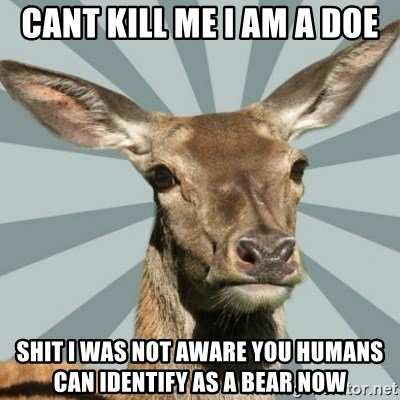 Comox Valley Deer - cant kill me i am a doe shit i was not aware you humans can identify as a bear now