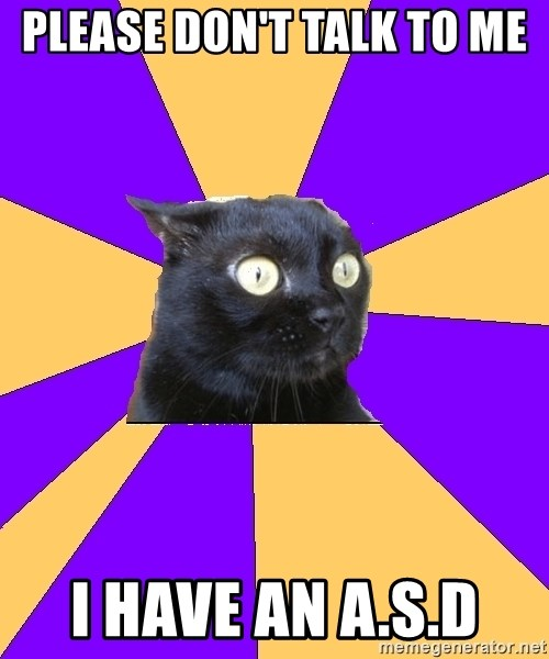 Anxiety Cat - Please don't talk to me  I have an A.S.D