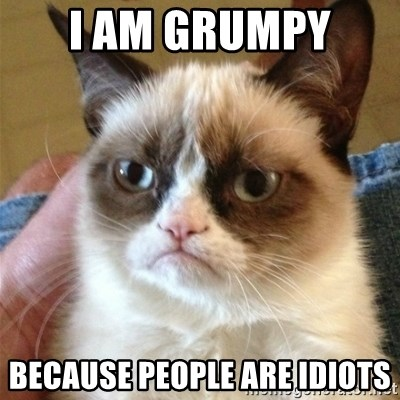 Grumpy Cat  - I am Grumpy  because people are Idiots