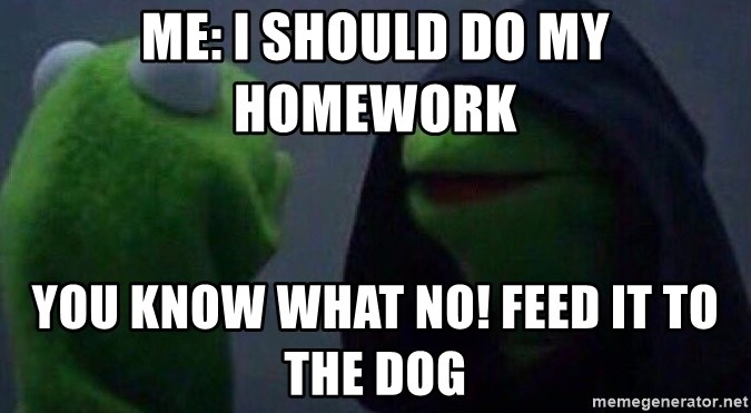 Evil kermit - Me: I should do my homework  You know what No! Feed it to the dog