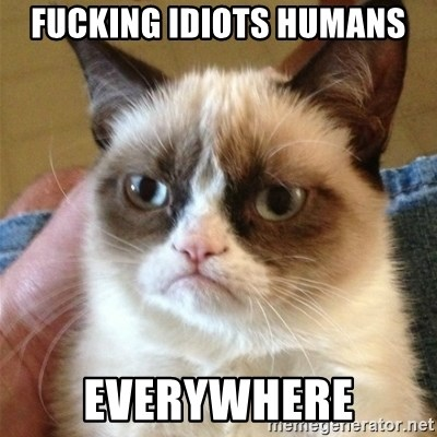Grumpy Cat  - fucking idiots humans everywhere