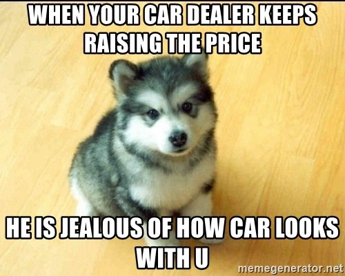 Baby Courage Wolf - when your car dealer keeps raising the price he is jealous of how car looks with u