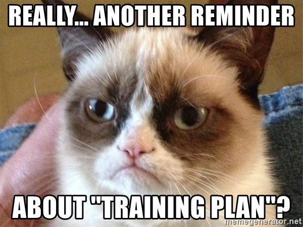 Angry Cat Meme - Really... another reminder about ''Training Plan''?