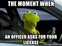 kermit the frog in car - the moment when  an officer asks for your license