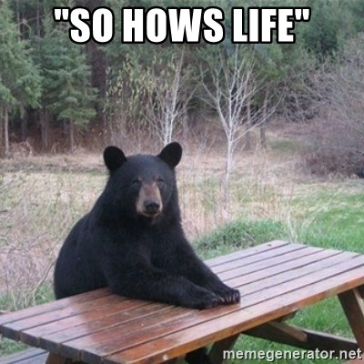"Patient Bear - ""so hows life"""