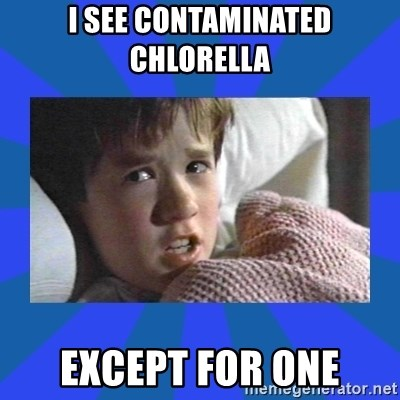 i see dead people - I see contaminated Chlorella  Except for one