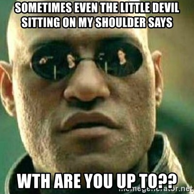 What If I Told You - Sometimes Even The Little Devil Sitting On My Shoulder Says WTH Are You Up To??