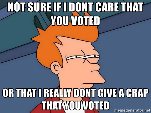 Futurama Fry - Not sure if I dont care that you voted  Or that I really dont give a crap that you voted