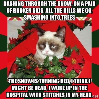 GRUMPY CAT ON CHRISTMAS - dashing through the snow, on a pair of broken skis, all the hills we go, smashing into trees the snow is turning red, I think I might be dead, I woke up in the hospital with stitches in my head.