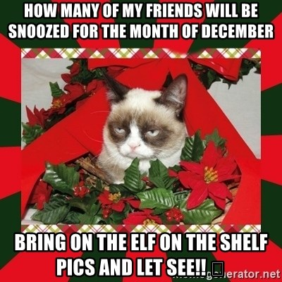 GRUMPY CAT ON CHRISTMAS - How many of my friends will be snoozed for the month of December  Bring on the Elf on the shelf pics and let see!! 😂