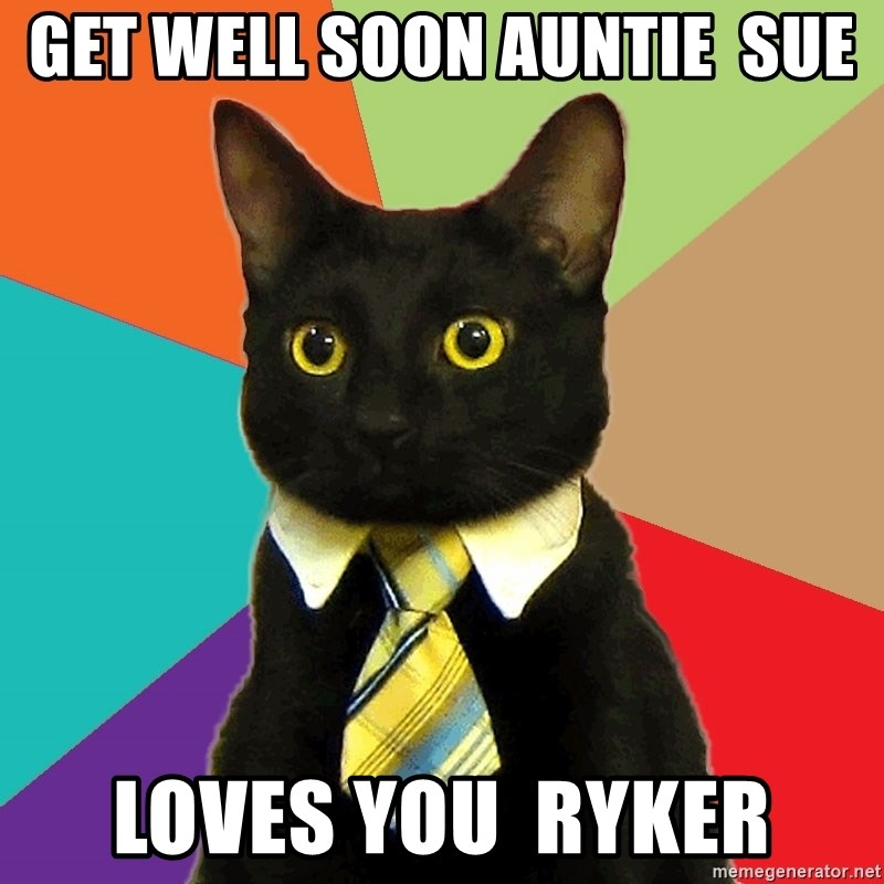 Business Cat - Get well soon auntie  sue Loves you  ryker