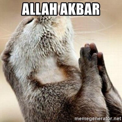 Praying Otter - Allah akbar