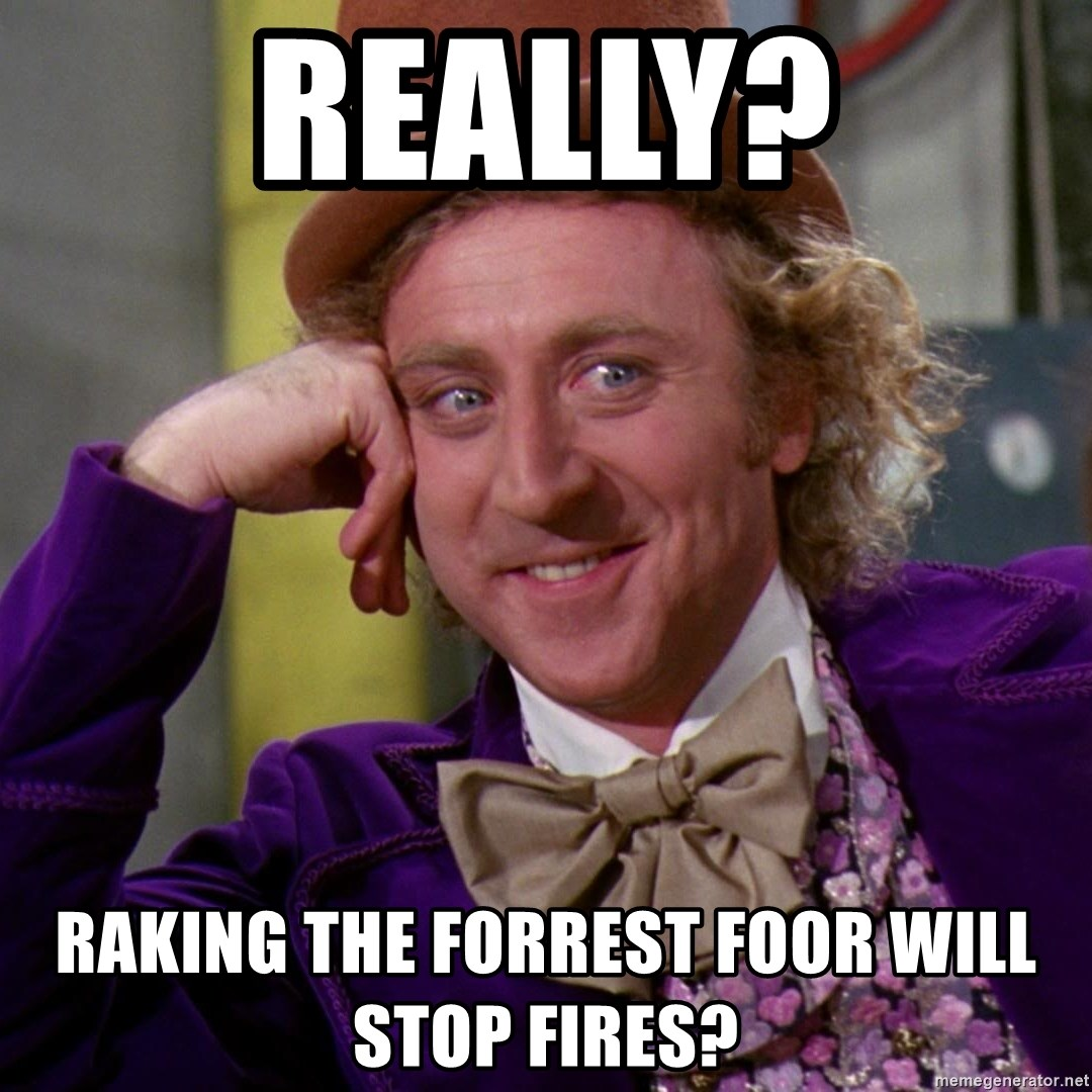 Willy Wonka - Really? Raking the Forrest foor will stop fires?